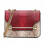 YTTY Fashion all Match con bilanciere piccolo quadrato borsa catena borsa a tracolla messenger bag, rosso