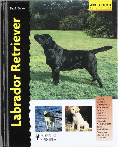 Labrador Retriever (Excellence) por Bernard Duke