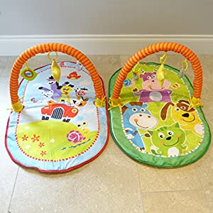 Baby Gym Play Mat Compact Baby Activity Gym Car Design