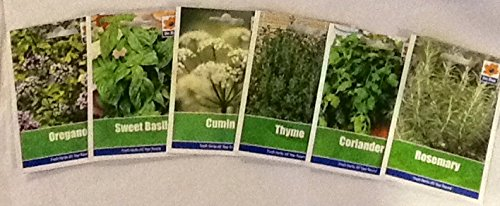 herb-collection-4-selection-of-6-fresh-herb-seeds-oregano-coriander-sweet-basil-mint-rosemary-thyme