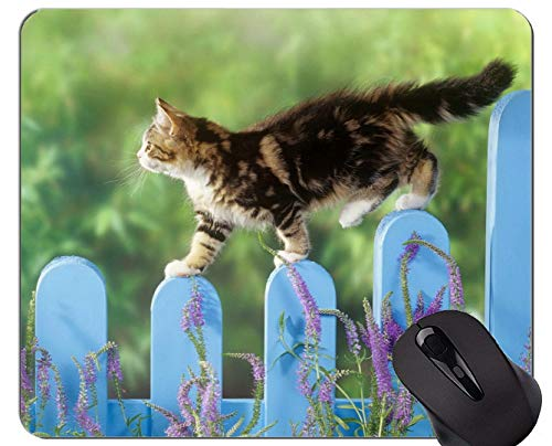Gaming Mouse Pad Custom, Kätzchen Tier Frühling Zaun Katze Lavendel Rutschfeste Gummibasis Mousepad