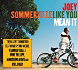 Mean It by Joey Summerville (2008-05-27)