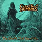 Ghosts That Haunt Me by Crash Test Dummies