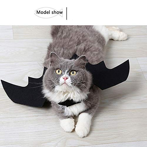 Casefirst Pet Cat Dog Clothes Cool Black Bat Wings Harness/Costume for Halloween Cosplay
