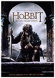 The Hobbit: The Battle of the Five Armies [DVD] [Region 2] (IMPORT) (Keine deutsche Version)