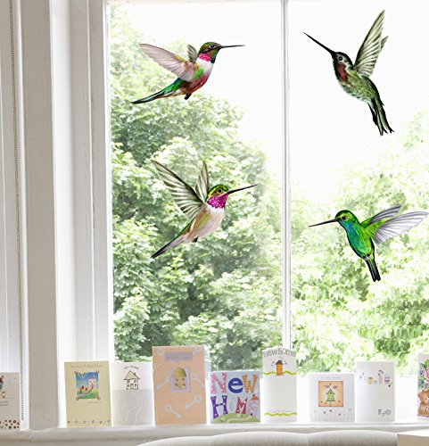 Stickers4 Vogel-Fensteraufkleber zum Schutz gegen Vogelschlag - vier schöne Kolibri-Glasaufkleber, doppelseitig und selbstklebend zum Schutz gegen Vogelkollisionen