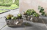 Dekoleidenschaft 'da zinco pflanzer Bianco Cuore caso fiore fioriera portavasi fioriere vaso vaso di fiori