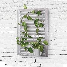 Suchergebnis auf f r wandhalterung pflanzen for Wandhalterung pflanzen