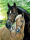 XDXART DIY Ölgemälde Malen nach Nummer Kit für Kinder Erwachsene Anfänger 16x20 Zoll - Zwei Pferde, Zeichnen mit Pinsel Weihnachtsdekor Dekorationen Geschenke (Ohne Rahmen)