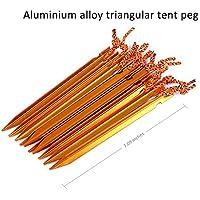 Shuzhen,10pcs Triangular Carpa Clavija con Cuerda Estaca De Uñas Senderismo Accesorio para Viaje Senderismo Acampar Escalada Otras Actividades Al Aire Libre(Color:Dorado)
