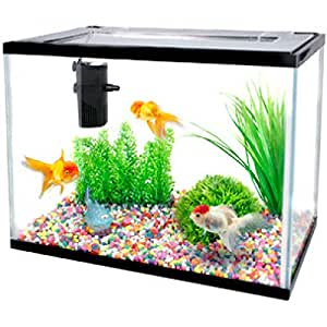 AQUARIUM Starter-SET LOLLIPOP 16L - 36CM