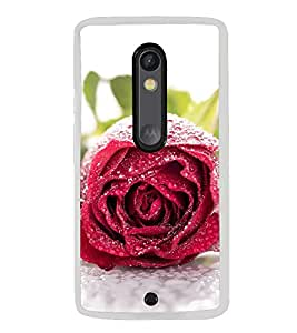 ifasho Designer Back Case Cover for Motorola Moto X Style :: Moto X Pure Edition (Rosette Water Bubbles Rosy Beautiful Rose)
