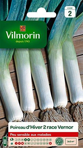 Vilmorin 3846642 Pack de Graines Poireau d'Hiver 2 Race Vernor Création