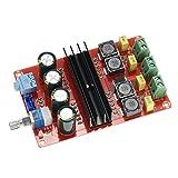 KKmoon 2 x 100W Digital Audioverstärker Brett TPA3116D2 Doppelkanal Verstärker Board DC12V-24V für Arduino