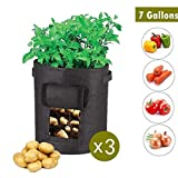 3-Pack 7 Gallon Grow Borse per Piante di Tessuto Non Tessuto/aerazione Tessuto Pentole per Coltivare ortaggi, Patate, Carote e Cipolla piantare Bag (7 galloni, Nero)
