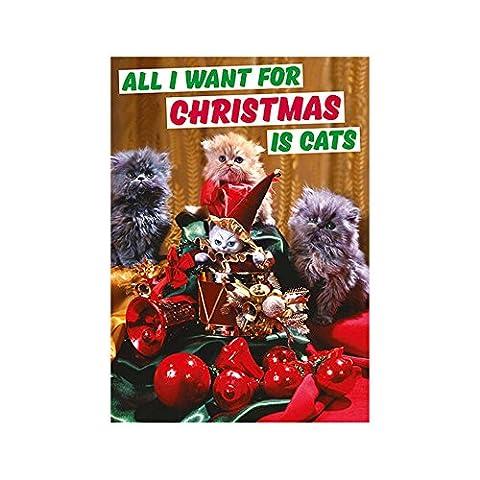 All I Want For Christmas Is Katzen Funny Weihnachten Karte (Katze Weihnachtskarten)