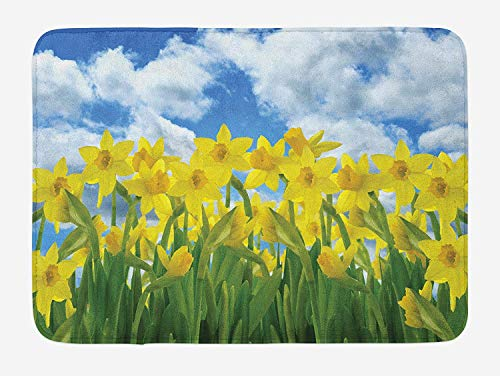 RAINNY Daffodils Bath Mat, Field of Daffodil Flowers Against Summer Sky Cloudscape Picture Print, Plush Bathroom Decor Mat with Non Slip Backing, 23.6 W X 15.7 W Inches, Yellow Green Blue