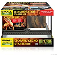 Exo terra ET Kit Terrarium pour Gecko Léopard