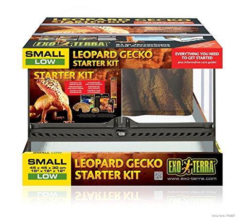 Exo Terra Kit Gecko