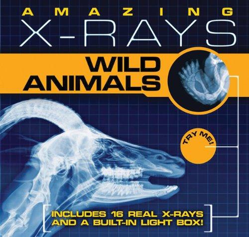 Amazing X-Rays