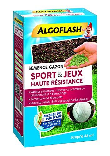 ALGOFLASH SEMHR1 Semences Gazon Sports et Jeux Haute Résistance, Bleu, 1 kg