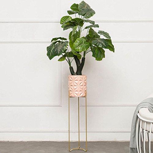 HJ Étagère Verticale Simple et innovatrice Simple-Couche Balcon Salon Suspendus Cadre d'orchidée Pot planteur présentoir Garden (Couleur : Pink, Taille : 20 * 80CM)
