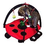 GeKLok Pet Tragbar Faltbar Laufgitter, Puppy Dog Pet Katze Kaninchen Meerschweinchen Stoff Laufgitter Transportkäfig für Hunde Katzen