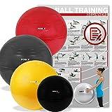 POWRX Gymnastikball DELUXE inkl. Pumpe & Workout I Sitzball, Gr. 65 cm
