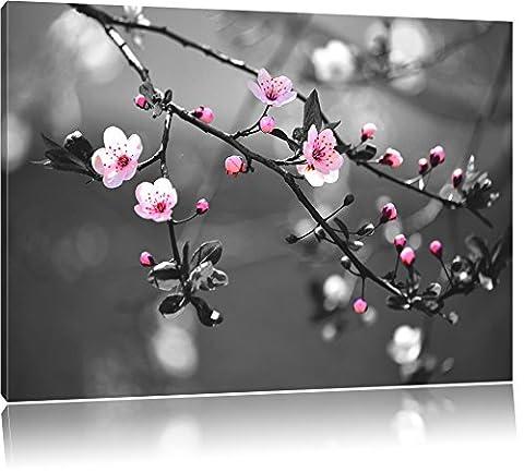 Exotique Sakura Blossoms Noir / Blanc, Taille: 60x40 sur toile,