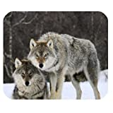 Awesomely Evergreen Fashion Gray Wolves in The Snow Field Marvelous Customized Mouse Mat/Pad 9.84