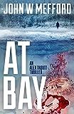 AT Bay (An Alex Troutt Thriller, Book 1) (Redemption Thriller Series) (English Edition)