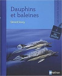 Dauphins et baleines : Encyclopédie de poche