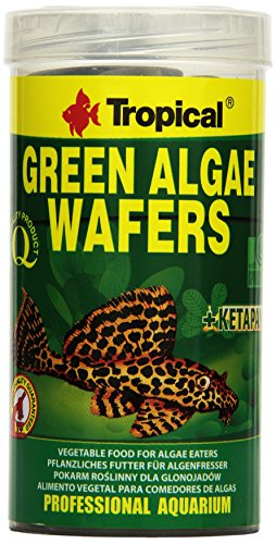 Tropical Tadeusz Ogrodnik Green Algae Wafers gr.113/ml.250