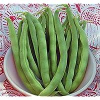 Pets Delite® Bean, Pole Kentucky Wonder Seeds, Orgã¡Nico, NO GMO, Mã¡s de 20 Semillas por Paquete, Hearty Healthy Green Been