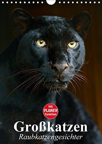 Großkatzen. Raubkatzengesichter (Wandkalender 2017 DIN A4 hoch): Die unbeschreiblich schönen Gesichter von Großkatzen sind immer wieder ein Freude. (Planer, 14 Seiten) (CALVENDO Tiere)