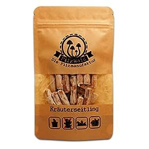 PilzWald Kräuterseitlinge züchten - 25 Pilzdübel - Anbau im Pilzbeet & auf Stroh - Pilzbrut Pilzzuchtkultur