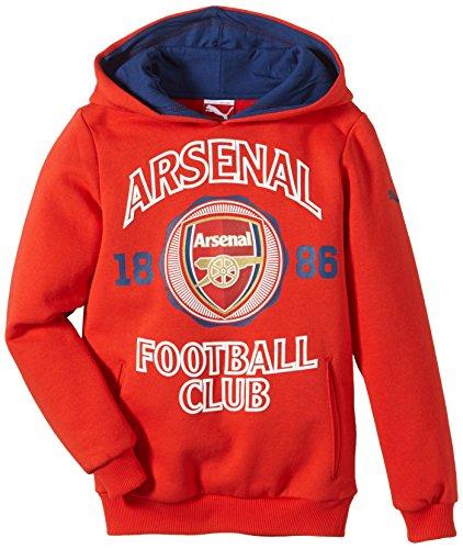 Puma Afc Fan Sweat-shirt à capuche Homme