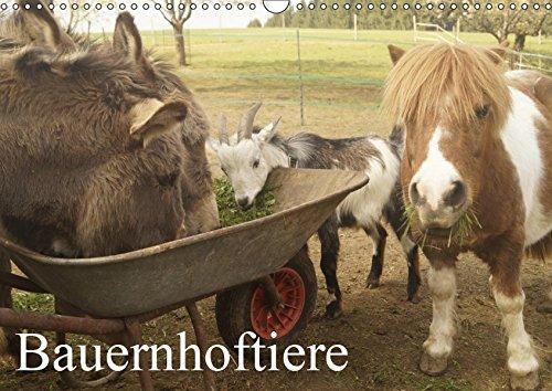 Bauernhoftiere (Wandkalender 2019 DIN A3 quer)