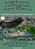 Adaptogene. Verborgene Super-Pflanzen. wissenschaftlich belegt: Stress-Killer & Leistungs-Steigerer: Was sie können und wie sie wirken!
