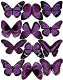 Cakeshop 12 x Vorgeschnittene Lila Essbare Schmetterlingskuchen Topper (Tortenaufleger, Bedruckte Oblaten, Oblatenaufleger)