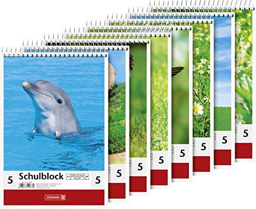 Brunnen 1041905 Schulblock Lineatur 5 (A5, 40 Blatt, 5 mm kariert)
