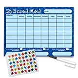 Re-usable Reward Chart, (including FREE Star Stickers and Pen) -Blue Stars
