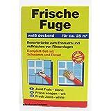 Pufas Frische Fuge Set 250 ml Frische Fuge weiss, 1 Schwamm,1 Pinsel     1,000 ST