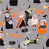 grauer Halloween Hexe Kürbis Katze Stoff Alexander Henry