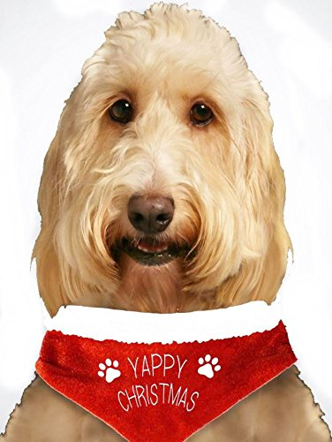 Yappy-Christmas-Pet-Bandana-Father-Santa-Paws-Pet-Fancy-Dress-Outfit-For-Dogs