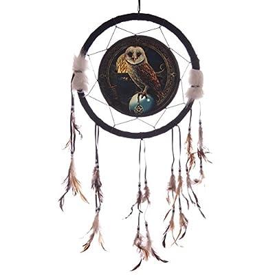 Dreamcatcher - Lisa Parker Barn Owl 33cm