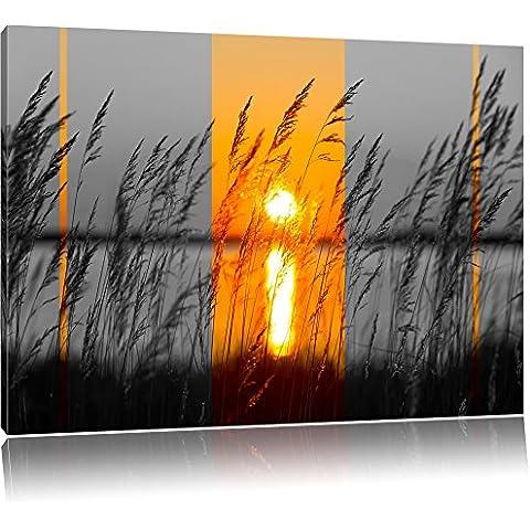 Erbe al tramonto nero / bianco Taglia: 120x80 su tela, enorme Immagini XXL completamente Pagina con la barella, stampe d'arte su murale con telaio, più economico di pittura o pittura ad olio, nessun manifesto o poster