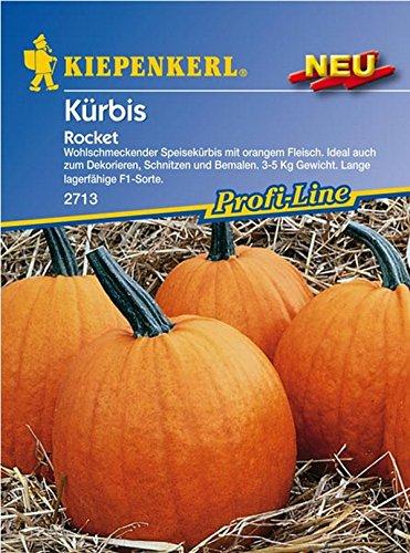 Kiepenkerl, Kürbis Rocket F1