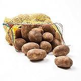 Kartoffeln Belana Speisekartoffeln 12,5kg