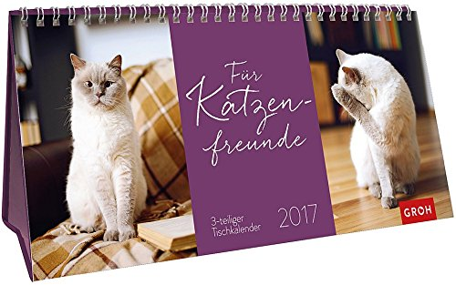 Für Katzenfreunde 2017: 3-teiliger Tischkalender mit Monatskalendarium (Schreibtisch Katze-kalender)